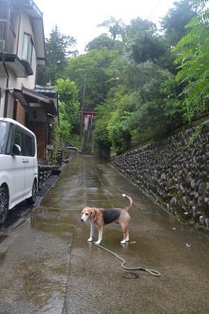 20180808鑓水諏訪神社02