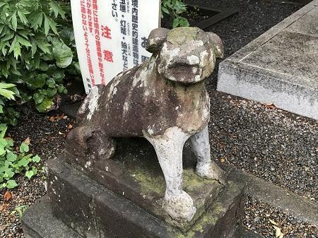 20180808日野若宮神社19