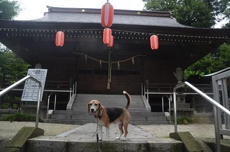 20180809相原諏訪神社17