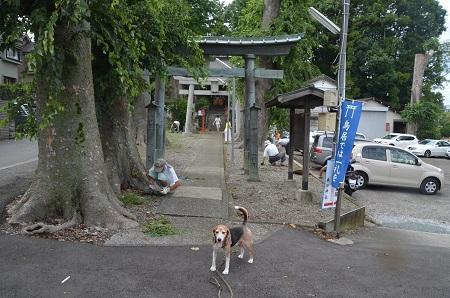 20180809大蔵春日神社01