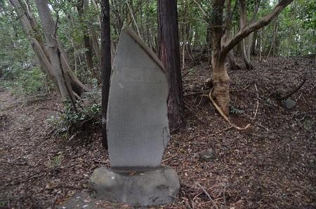 20180809八王子白山神社29