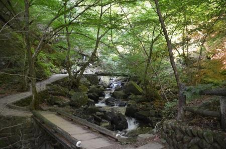 20180822竜化の滝15