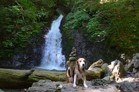 20180822竜化の滝14