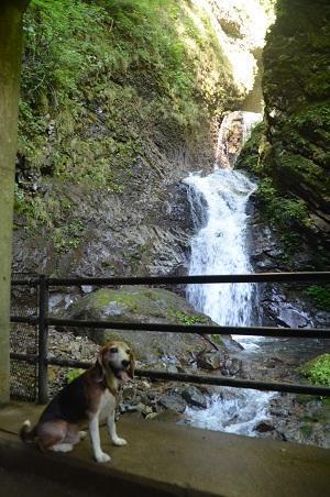 20180822竜化の滝20