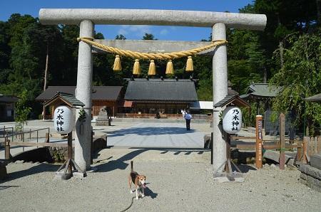 20180822乃木神社08