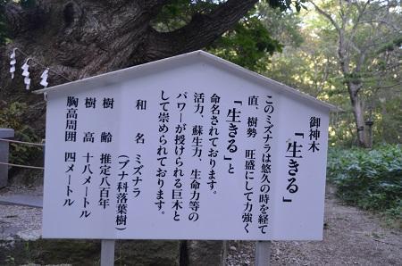 20180822温泉神社36