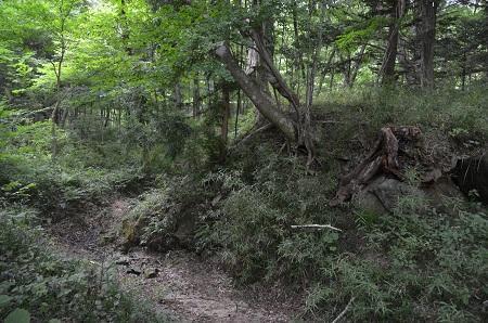 20180823木の俣園地22