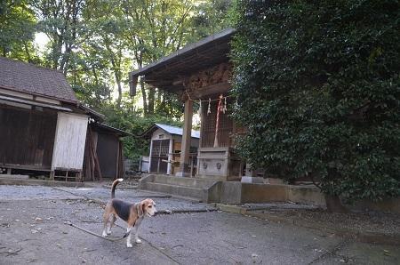20180908山神社12