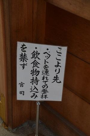 20180908亀ヶ池八幡宮18