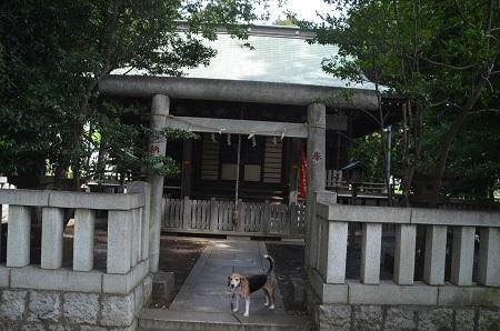 20180908下九沢御嶽神社09