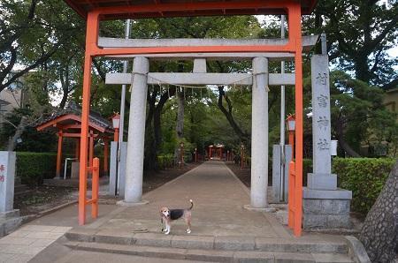 20180908村富稲荷神社