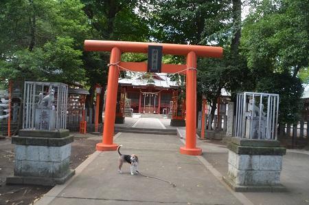 20180908村富稲荷神社08