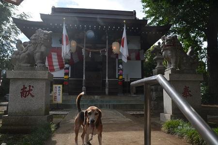 20180908淵野辺日枝神社10