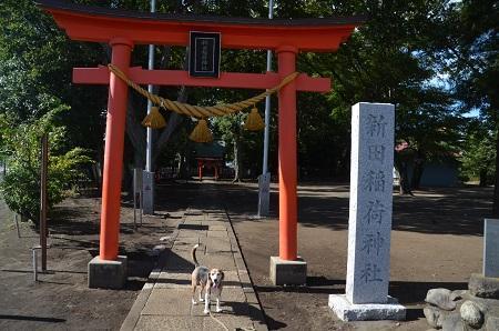20180908新田稲荷神社02
