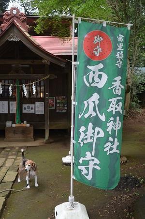 20180916富里香取神社09