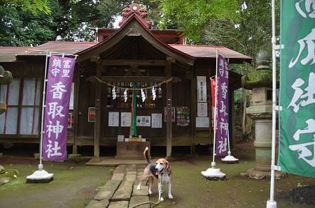 20180916富里香取神社07