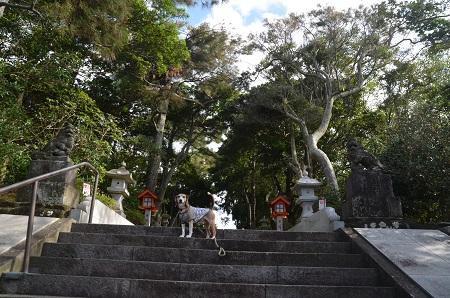 20180923鶴峯八幡神社10
