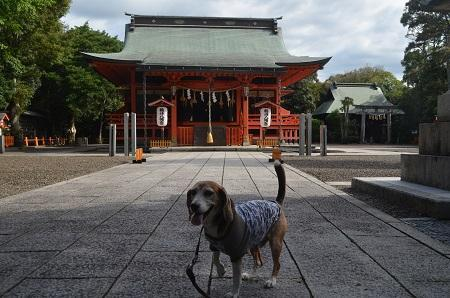 20180923鶴峯八幡神社19