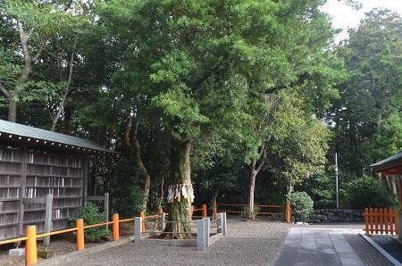 20180923鶴峯八幡神社37