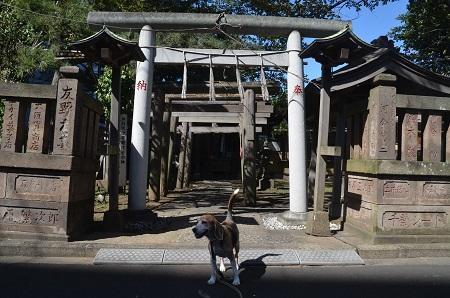 20181001港町厳島神社02