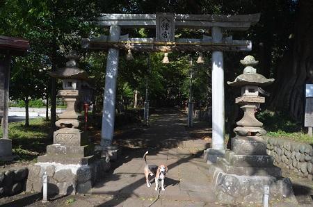 20181007川尻八幡宮06