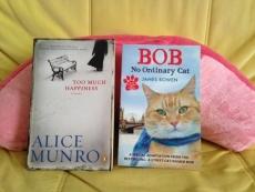 05猫映画2本、「猫なんてよんでもこない」と「ボブという名の猫」