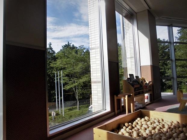 18.8.14黒山三滝(夏休み) (105)