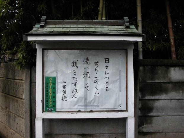 2 18.9.11 散歩と大学芋放送(10日) (40)