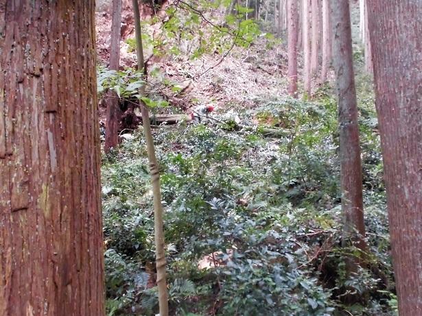 18.10.4 日和田岩トレ (12)
