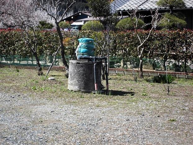 18.3.23 大鷹取山  (143)