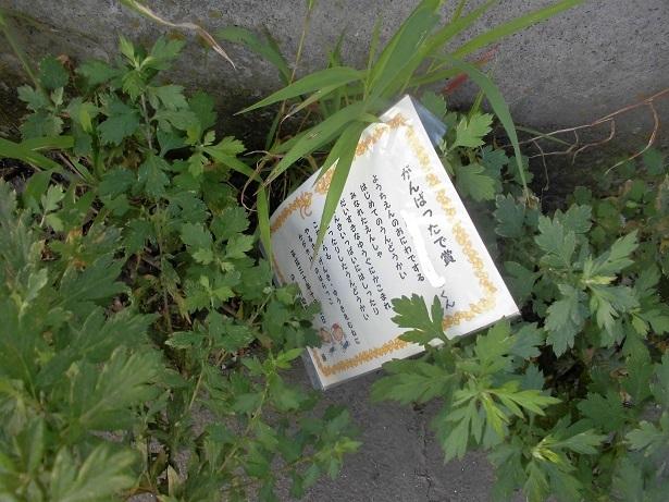 4 18.10.9 散歩・ママチャリング (42)_LI