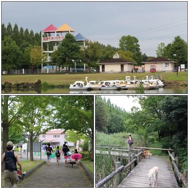 加須水上公園