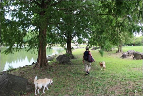 040加須水上公園