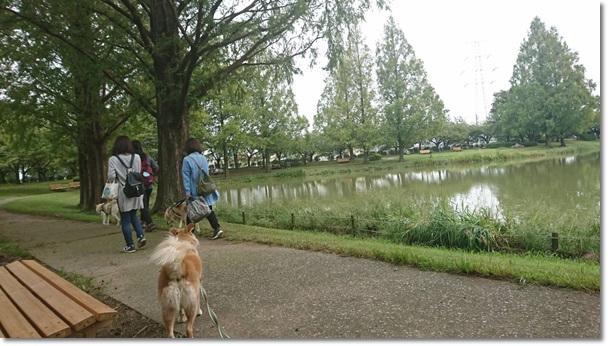 10173川越水上公園