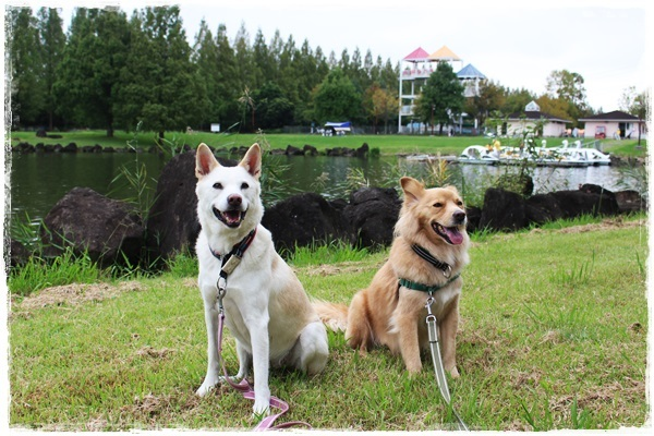024加須水上公園