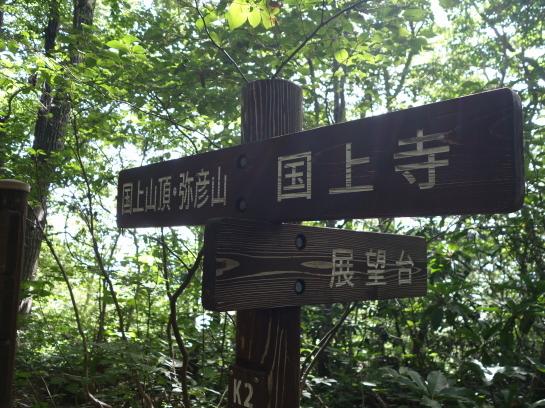 kugami18920027.jpg
