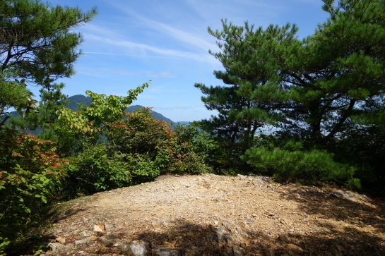 kugami18920045.jpg