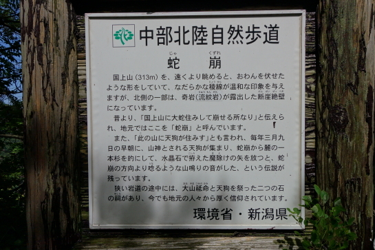 kugami18920046.jpg