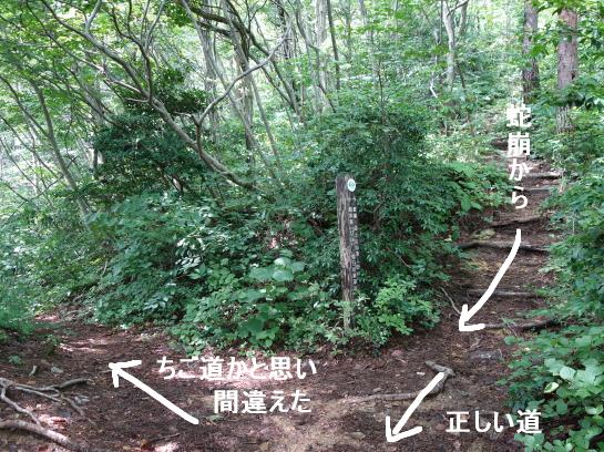 kugami18920054.png