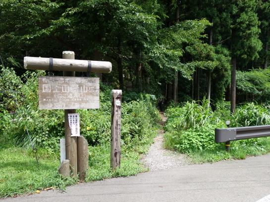 kugami18920084.jpg
