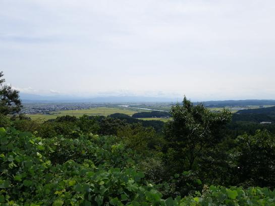 kugami18920088.jpg
