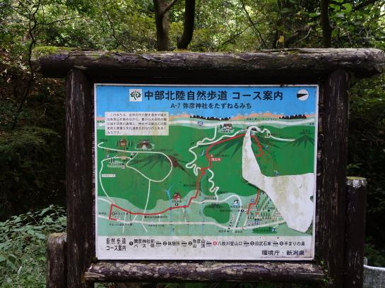 yahiko1810080004.jpg