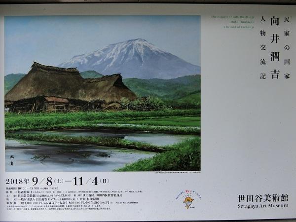 7-CIMG2528.jpg