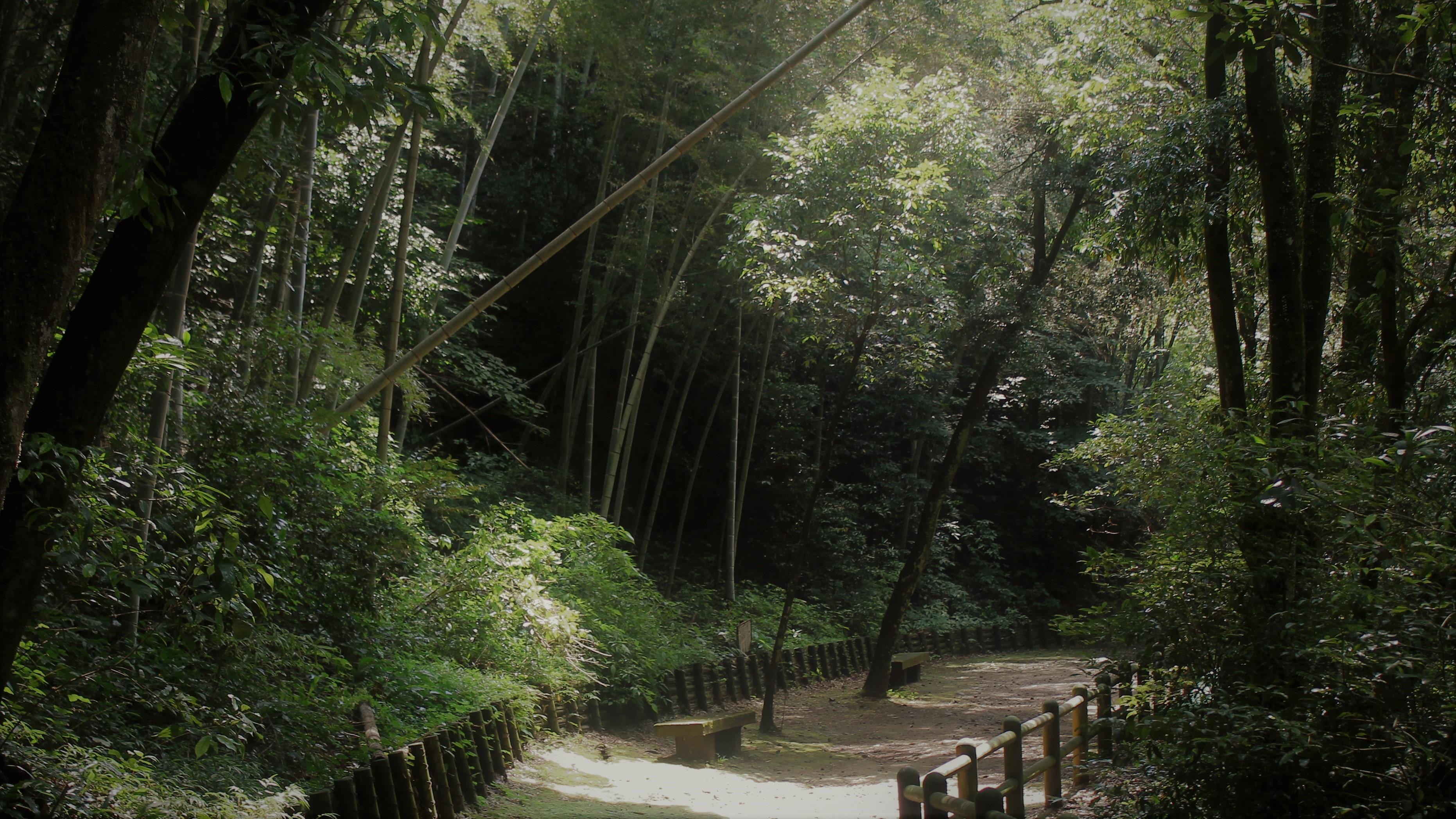 慈眼寺自然遊歩道