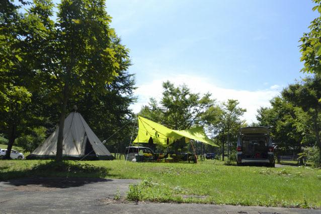 何がなんでもキャンプだし ペット 犬連れ キャンプ ベッド チェア あぐらイス プロックス 座面高 小型犬 角度