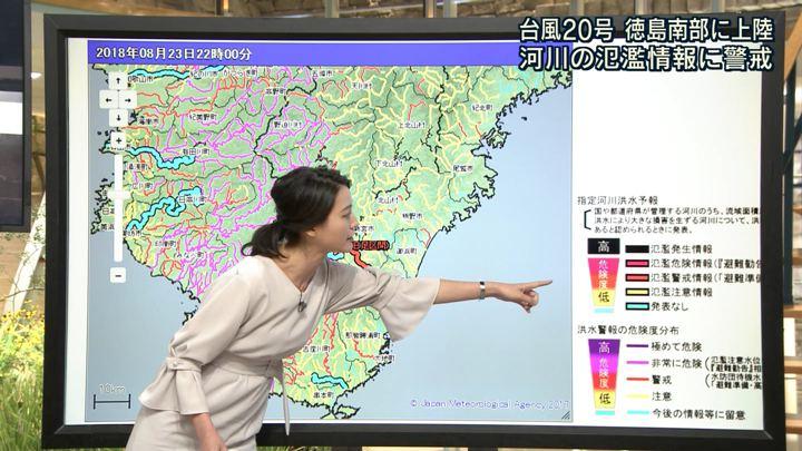 2018年08月23日小川彩佳の画像09枚目