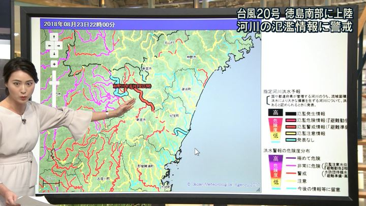 2018年08月23日小川彩佳の画像10枚目