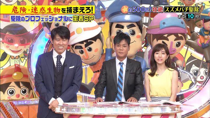田中みな実 ジョブチューン (2018年08月18日放送 11枚)