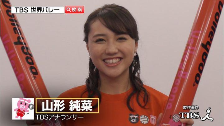 山形純菜 2018世界バレー女子9月29日開幕< あさチャン! (2018年09月17日20日,21日放送 25枚)
