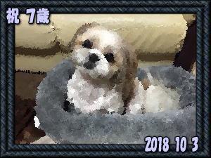 20181012022012b00.jpg